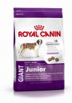 ROYAL CANIN Giant Junior sucha karma dla psów juniorów 4 kg