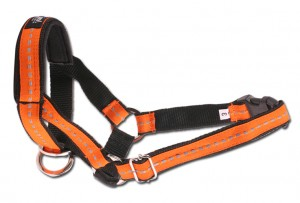 AMI PLAY Halter dla psa NO2 Foxterrier